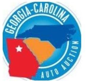 Georgia Carolina Auto Auction